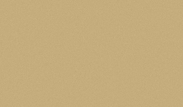 AF407 Champagne Gold Metallic
