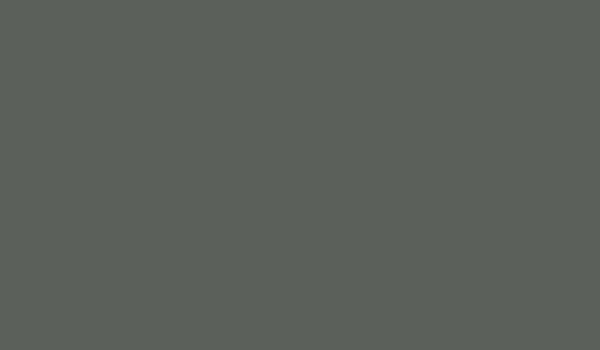 AF410 Mouse Gray